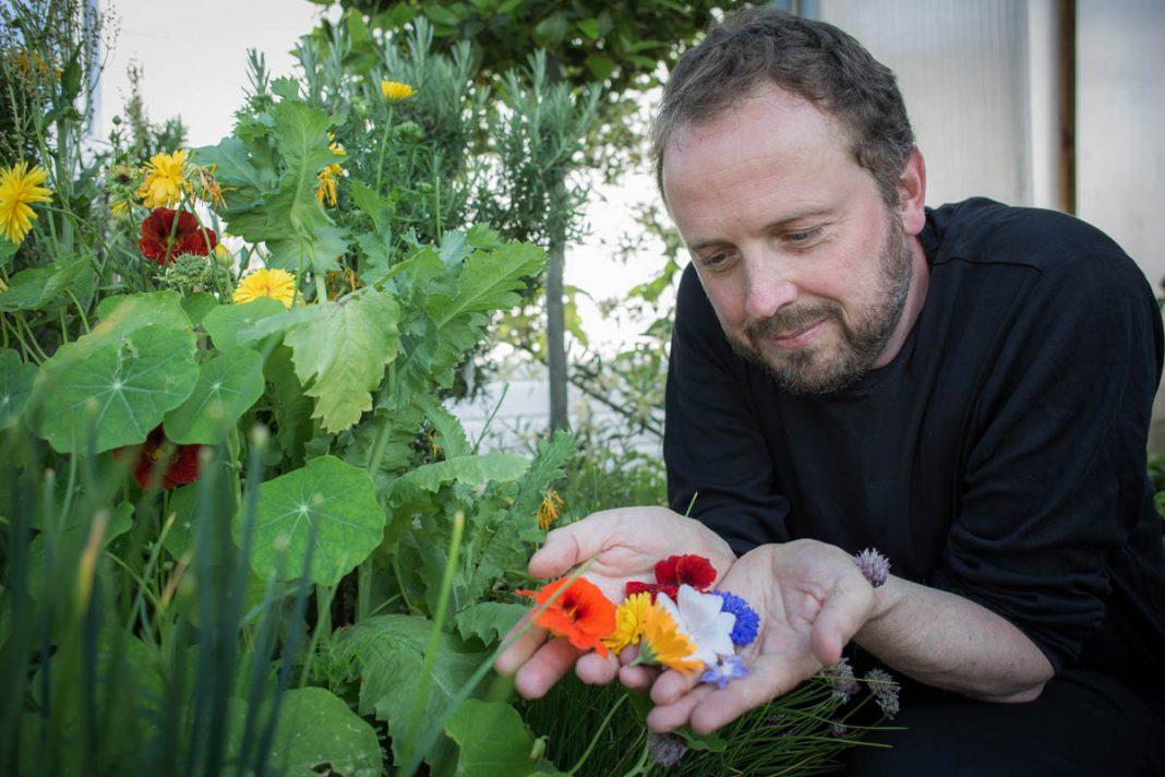 Leo Erksen oogst eetbare bloemen uit zijn daktuin | © Sandra Hoogeboom