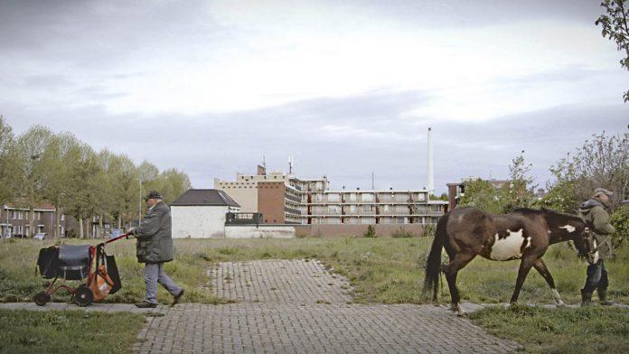 Gerrit met paard helpt buurtbewoners | © HUMAN